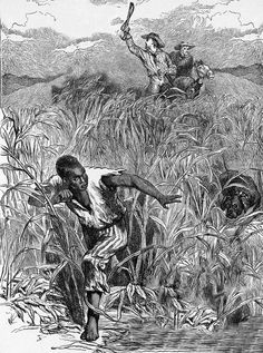 """Manisha Sinha has produced an encyclopedic study of the abolitionist movement in """"The Slaves' Cause: The History of Abolition"""" Sexy Black Art, Black Men, Unity In Diversity, Urban Nature, Hip Hop Art, Political Art, African Diaspora, History Books, Shades Of Black"""