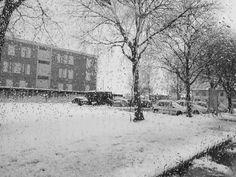 """non piangere, è solo neve - ieri un collega mi ha detto:""""sicuramente quando esci da qui andrai a fotografare la neve in collina!"""". Eh, no! io sono pigro e non mi piace andare a prendere freddo in giro... la neve preferisco guardarla dai finestrini :)"""