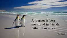A journey is best measured in friends rather than miles