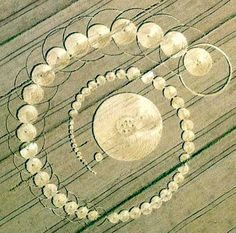 A new Crop Circle appeared in Fabbrico, Italy on June 25th.