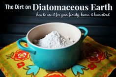 Diatomaceous Earth for your Family, Home, and Homestead | The Prairie Homestead