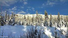 Winter on the Meadows Equity Mine Road. Houston, BC. Travel Houston British Columbia
