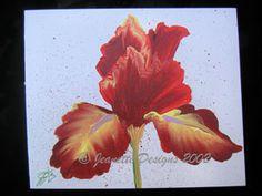Blue Eyed Brunett Iris Hand Painted Card