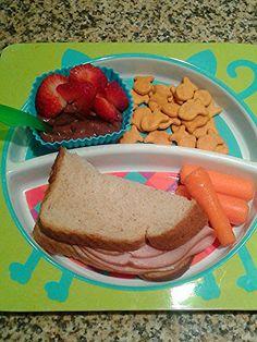Healthy Toddler Preschool Bento Lunch Ideas Allergy Friendly