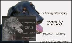 Loss of a pet is no less painful than the loss of a family member. It remains alive in the memories. You can see your beloved pet in pictures and also you have an opportunity to give it a place in your home by putting a memorial plaque in the name of your pet.  Visit Here :- http://www.ideastap.com/People/writeforus/Blog/0c3b2ac9-e633-41af-9f8e-a36f007ff7e0