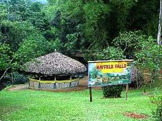 Mayfield Falls in Westmoreland Jamaica - Things To Do In Jamaica ...
