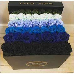 ideas for flowers box luxury Flower Box Gift, Flower Boxes, My Flower, Amazing Flowers, Beautiful Roses, Beautiful Flowers, Beautiful Images, Catty Noir, Birthday Goals