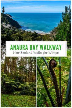 New Zealand Walks for Wimps: Anaura Bay Walkway Travel Photos, Travel Tips, Travel Destinations, Travel Plan, New Zealand Itinerary, New Zealand Travel, New Zealand Campervan, Visit New Zealand, To Go