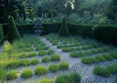 Jardins Agapanthe. lavenders