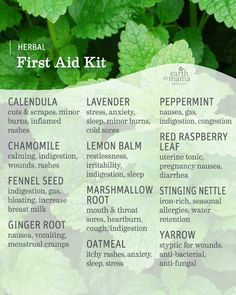 Use these simple herbal home remedies for cold and flu that truly work from a certified herbalist. I can't wait to test these homemade herbal out this year! Best thing, they are all whipped up with common kitchen herbs and ingredients. Healing Herbs, Medicinal Plants, Natural Healing, Holistic Healing, Natural Life, Natural Living, Natural Beauty, Herbal Magic, Alternative Health