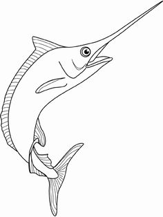 line+drawing+swordfish | Coloring picture of spearfish marlin