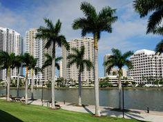 Gray Line Orlando - One Day Miami Tour