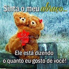Sinta o meu abraço Hug, Bear, Memes, Animals, Tumblr, Facebook, Google, Quote Of The Day, Romantic Quotes