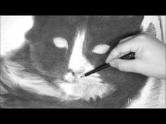 Henri, The Cat (Tribute) *NEW*