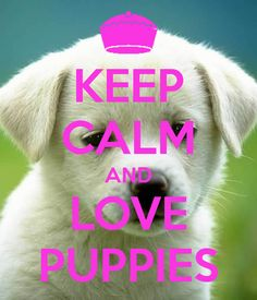 keep-calm-and-love-puppies-86.png (600×700)