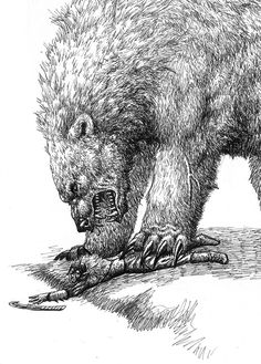 Beorn | Beorn and Bolg moth-eatn