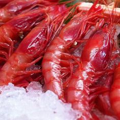 Gamba roja de Soller,Mallorca Roast Suckling Pig, Spicy Sausage, Balearic Islands, Spanish Food, The Dish, Dishes, Eat, Tapas, Spain