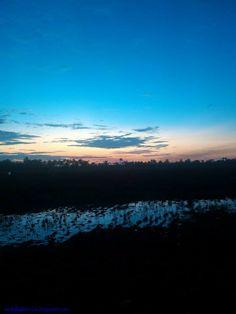 farm. sungai rengas
