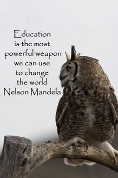 """""""Education is the most powerful weapon we can use to change the world."""" -- Nelson Mandela --""""Education is the most powerful weapon we can use to change the world. Owl Quotes, Wise Quotes, Quotable Quotes, Great Quotes, Quotes To Live By, Inspirational Quotes, Motivational Quotes, We Are The World, Change The World"""
