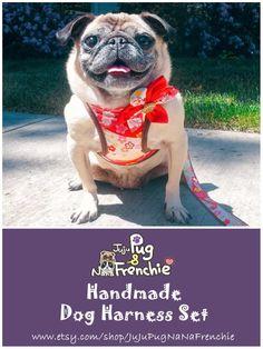 15 Remarkable Dog Leash For 2 Dogs Dog Leashes Harness For Medium Dogs Dog Harness, Dog Leash, All About Puppies, Big Dog Little Dog, Dog Information, Dog Hacks, Pug Love, Medium Dogs, Dog Photography