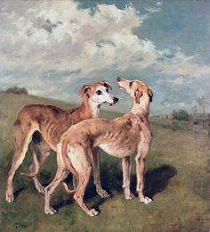 Greyhounds | John Emms | Oil on canvas
