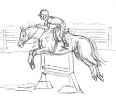 Google Image Result for http://0.tqn.com/d/drawsketch/1/0/J/W/horse-jumping-sketch-2.jpg