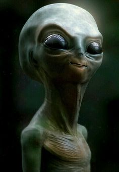 I love alien creatures so much that i've decided to do this little guy. Les Aliens, Aliens And Ufos, Ancient Aliens, Alien Facts, Alien Pictures, Systems Art, Alien Aesthetic, Grey Alien, Alien Character