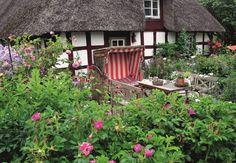 Duftende Heckenrosen ... Romantisches Gartenglück hinter´m Deich #Garten  DVA © Christian Lehsten http://paulineshouse.com/gaertnern-hinterm-deich-kueste/#more-2634