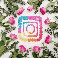1,032 отметок «Нравится», 44 комментариев — • J O D I • Flowers & Flatlays (@jodianne_) в Instagram: «• journal time • I started my journal a few months ago. On the first night I wrote down my goals…»