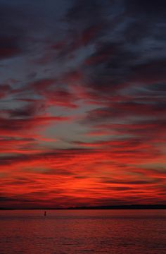 ♂ beautiful nature A Very Red Sunrise by Wayne Bierbaum