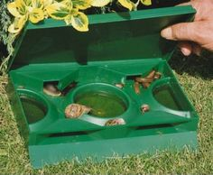 A little bit of beer in a shallow pan will kill those pesky snails and slugs in your garden.