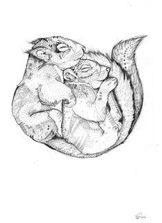 Sandra Dieckmann. Squirrels. Ardillas. http://perfectodia.blogspot.com.es