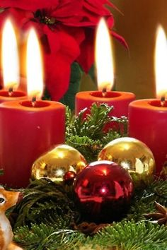 ✴Buon Natale e Felice Anno Nuovo✴Merry Christmas and Happy New Year✴ Noel Christmas, Merry Little Christmas, Christmas Candles, Green Christmas, Christmas Colors, All Things Christmas, Winter Christmas, Christmas Decorations, Christmas Ornaments