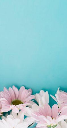 Pink on blue