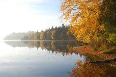 Fall by the lake L'automne au bord du lac