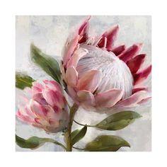 Protea Art, Protea Flower, Art Floral, Floral Design, Wall Art Prints, Canvas Wall Art, Wood Canvas, Sheep Art, Western Landscape