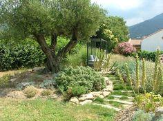 Pour des idées d'aménagement ou simplement pour admirer des jardins, découvrez des allées toutes en verdure.