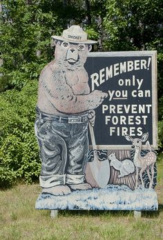 Smokey the Bear.Makes me think of dad Liivamäe Dennis Hamilton Brine Moss W Dennis