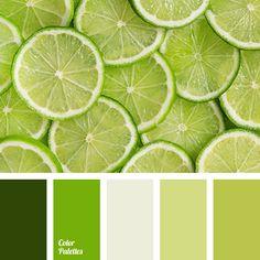 Color Palette No. 2825