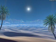 arabian, beautiful, bethlehem, bible, blue, bright, burst, christmas, date, desert, dry, dune, dunes, gift, grass, green, hill, holiday, holy, jesus, landscape, light, middle, mountains, nature, night, oasis, outdoor, palm, park, pregnant, sahara, sand, scenery, season, sign, sky, star, stars, story, sunset, supernova, symbol, three, travel, tree, trees, wise, xmas, free, 3d, wallpaper
