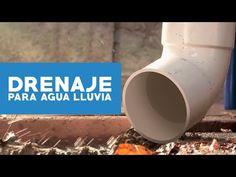 ¿Cómo hacer un drenaje para agua lluvia? (drenaje francés) - Hágalo Usted Mismo Rain Barrel, Ideas Para, Exterior, Mugs, Youtube, How To Make, Garden Ideas, Cases, Google