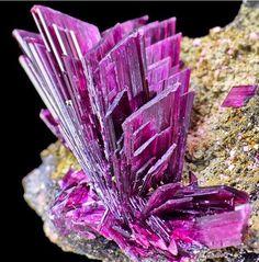 mineraliety: Злая эритрит из Марокко по Spirifer минералов ////// # whyilovemineralswww.spiriferminerals.comwww.mineraliety.com