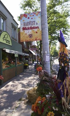 Fall Harvest Bucket List: VIsit your hometown and renew acquaintances! Does your town decorate for fall like Middleton? The Good Witch Series, Witch Tv Series, Hallmark Good Witch, Chesapeake Shores, Hallmark Movies, Hallmark Channel, Fall Harvest, Autumn, Original Movie