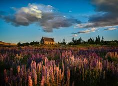 Shared by Trey Ratcliff and Featured by the #LandscapePhotography team!!  (MT)  Gorgeous colors a #Landscape #Photography