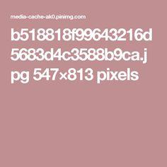 b518818f99643216d5683d4c3588b9ca.jpg 547×813 pixels
