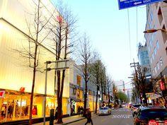 8 Best Cafes in Garosugil (Seoul)! - EatandTravelWithUs