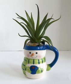 Snowman with Blue Hat and Green Scarf Ceramic Holiday Mug with Large Green Grass Succulent