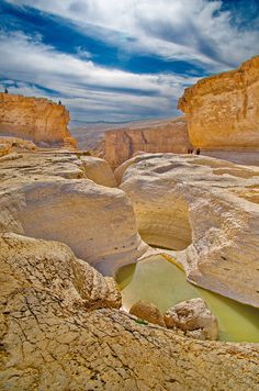 waterholes in the Peres Stream in the northern Negev Desert filled with water after a rainstorm.Israel