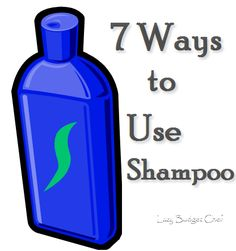 Lazy Budget Chef: Seven Ways to Use Shampoo Diy Cleaning Products, Cleaning Solutions, Cleaning Hacks, Deep Cleaning, Diy Cleaners, Cleaners Homemade, Ways To Save Money, Money Saving Tips, Money Savers