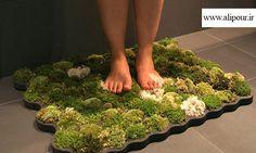 تولید فرشی از گیاه ... چه کسی دوست ندارد که حس قدم گذاشتن بر روی خزه و گیاه را بر روی انگشتان عریان پایش حس نکند؟ این فرش سبز از چهار لایه اصلی تشکیل شده است: لایه اول که بر روی زمین قرار می گیرد از جنس فوم بازیافتی است. لایه وسطی خزه هایی است که بر روی بستری خاص قرار گرفته اند و لایه نهایی هم فوم بازیافتی است که سوراخ های دایره ای شکل روی آن برای قرارگیری محل خزه ها ایجاد شده است. قطعات نیز به گونه ای طراحی شده اند که امکان قرار دادن آن ها در کنار هم وجود داشته باشد